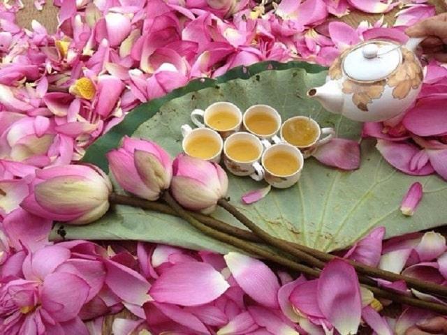 Hoa tưTrà ướp sen thắp hương rằm tháng 8ơi cúng rằm tháng 8