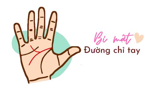 Xem chỉ tay là một cách xem bói có nguồn gốc từ chiêm tinh học của Ấn Độ.